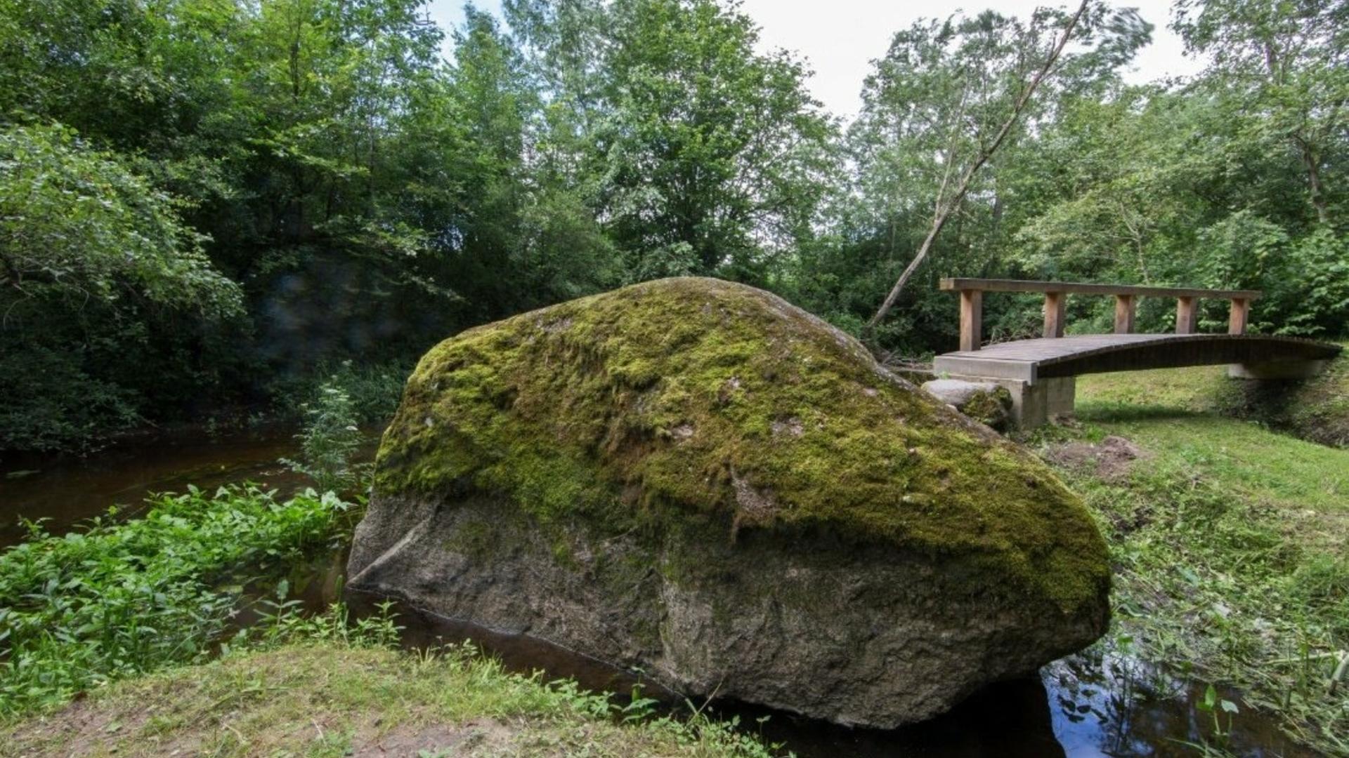 Stone Rapolas