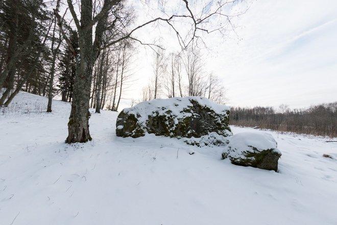 Stupele castle mound