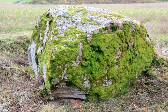 Birži Great Rock