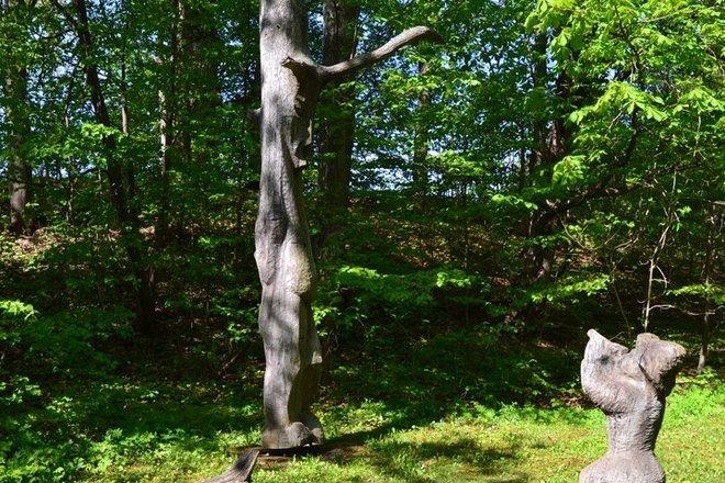 "Nature reserve ""Pilskalnes Siguldiņa"""
